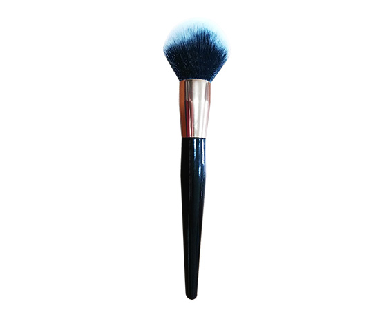 Dry powder brush